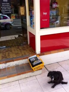 © Mme pL. / chien en laisse normand avec panier de VHS à l'autre bout